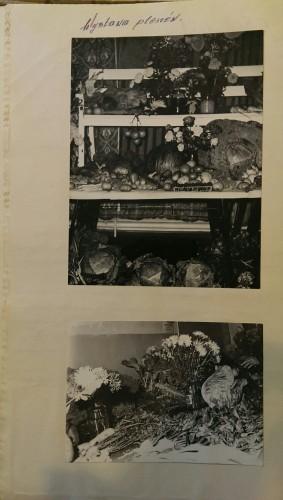 IMAG1867